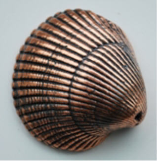Bronzed Shell